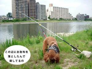 0513fishing2