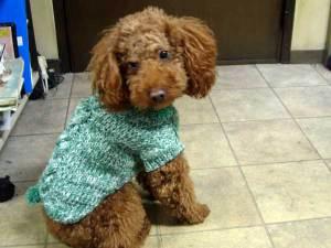 1216sweater1