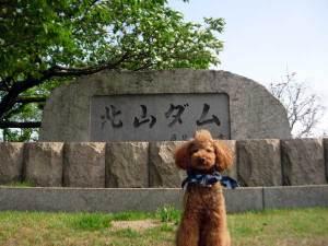 03kitayama