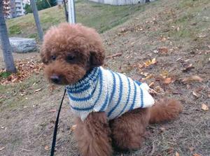 03sweater3