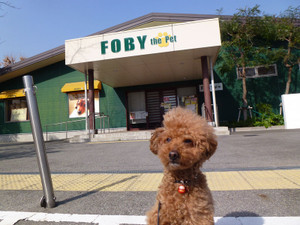 07foby1